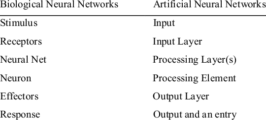 Biological vs Artificial Neural Networks