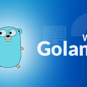 Why Golang? Some Key Pointers to Outline its Benef...
