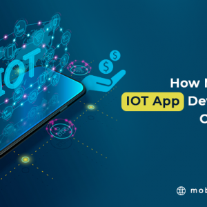 How Much Does IoT App Development Cost in 2021?