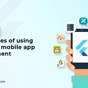 Top 8 Advantages of Using Flutter in Mobile App De...