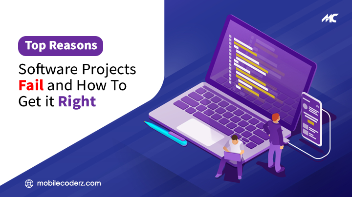 Top Reasons Software Projects Fail and How To Get It Right