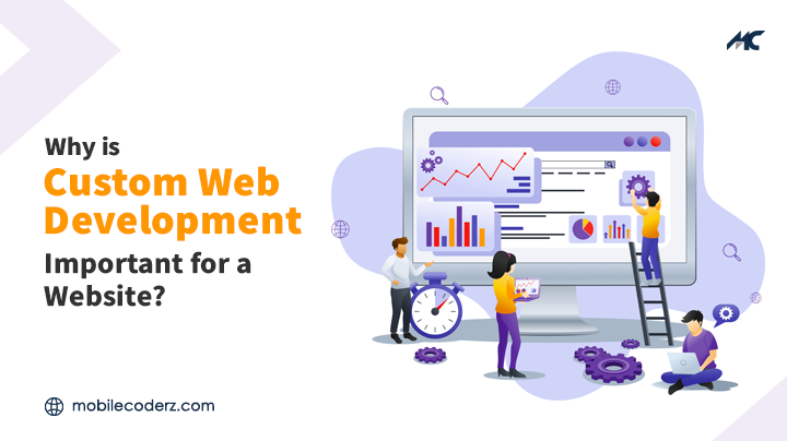 Why Should You Go For Custom Web Development For Your Business?