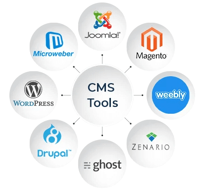 CMS web development tools
